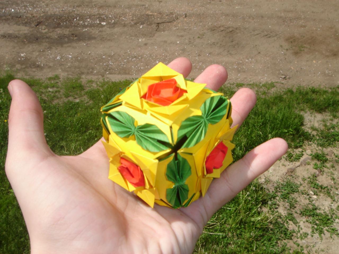 Роза плетистая уральская 1